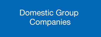 Domestic Group Companies